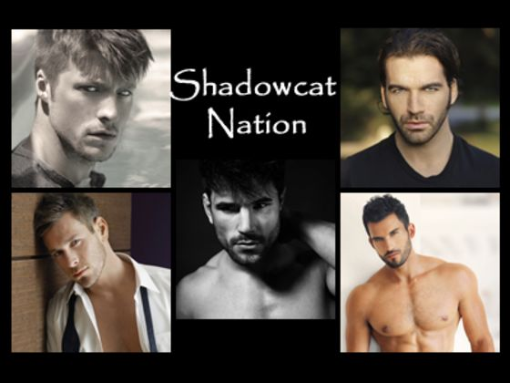 Which Shadowcat Nation Hero Is Your Perfect Man?