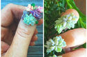 Succulent Nail Art Is Making It Possible To Have Real, Living Plants Growing On Your Fingertips!