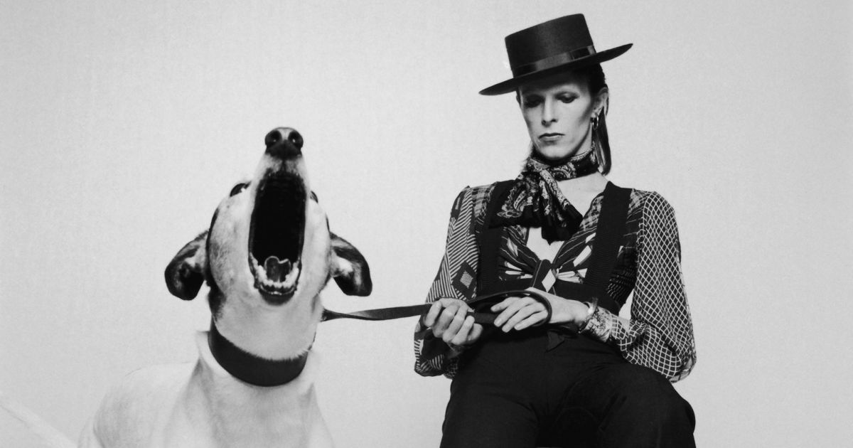Lyric david bowie word on a wing lyrics : What David Bowie album are you? | Playbuzz