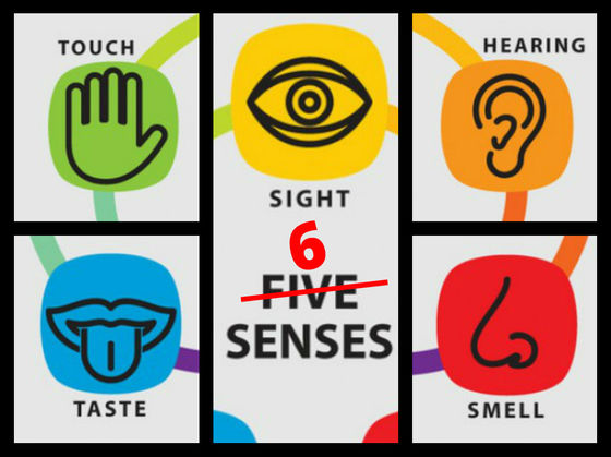 What Is Your 6th Sense?