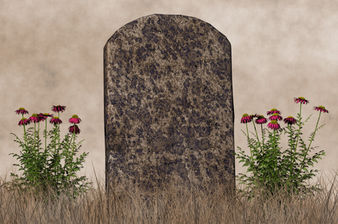 What Type Of Flowers Should Grow On Your Grave?