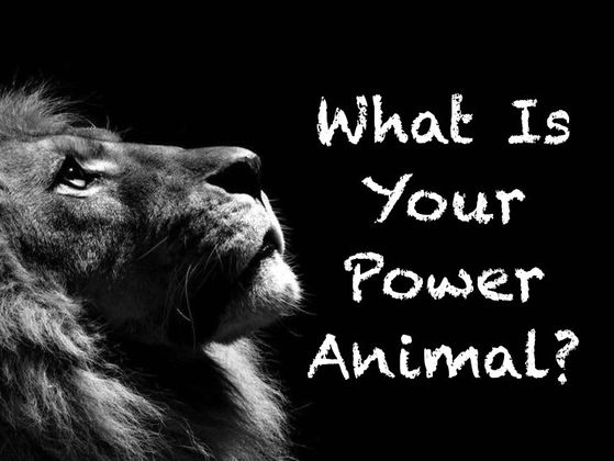 What Is Your Power Animal?
