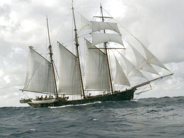 Hvor godt kender du Moby Dick Playbuzz-1750