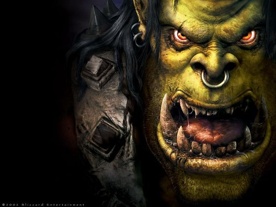 Which Warcraft Race Should You Be Reborn As?
