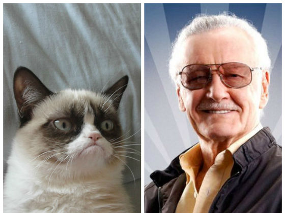 Stan Lee Met Grumpy Cat, And The Curmudgeonly Results Are Sure To Make You Smile!