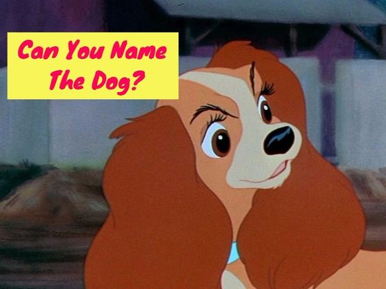 Can You Name These Famous Disney Dogs?