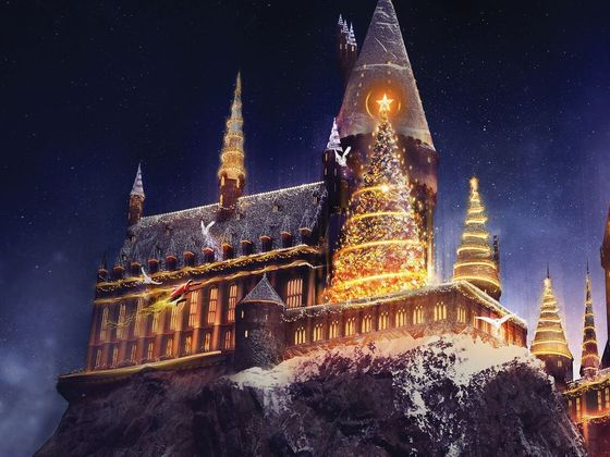 Spend Christmas At Hogwarts And We'll Sort You Into A Hogwarts House