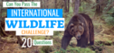 Can You Pass The INTERNATIONAL WILDLIFE Challenge?