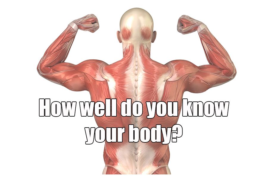 How Well Do You Know Your Body